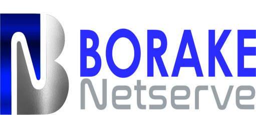 Borake Netserve Web Design and Hosting | Northern Cape, South Africa