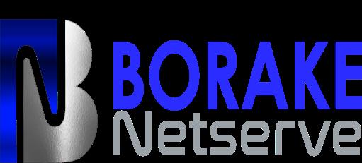 Borake Netserve Web Design and Hosting | Northern Cape, South Africa